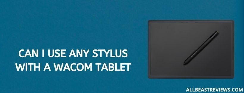 Can I Use Any Stylus With A Wacom Tablet
