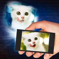 Projector Cat 3D Prank